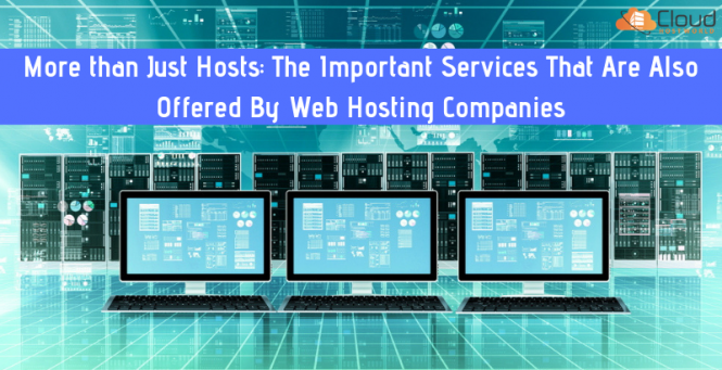Important Services Offered by Web Hosting Companies