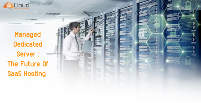 Managed Dedicated Server - The Future Of SaaS Hosting. Know how_ (2)